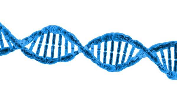ADN - Maladie de Crohn